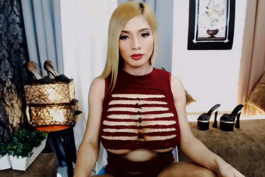 Blonde ladyboy with very feminine shapes